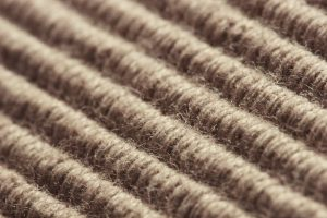 Carpet Cleaning Specialists Manchester